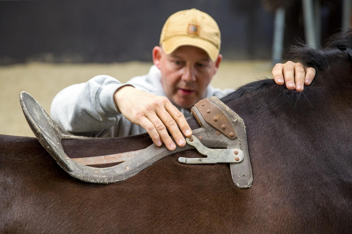 Будова сідла для коня
