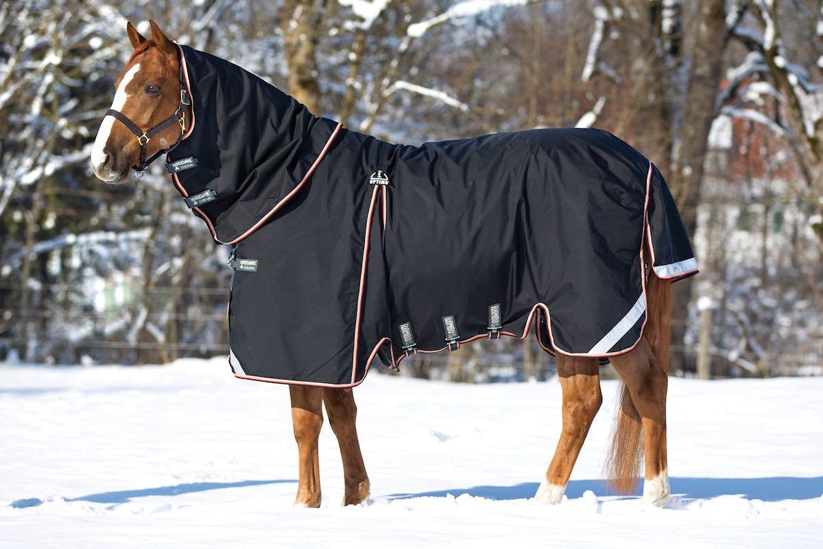 Зимняя попона для лошади