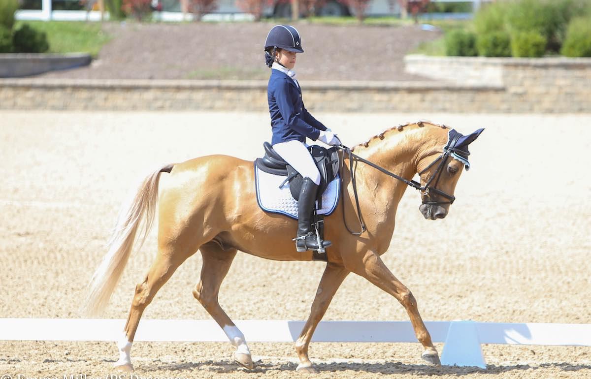 Преимущества конного спорта для детей