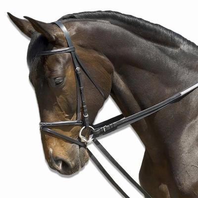 """Шпрунт для коня """"Schooling"""" Fouganza1"""