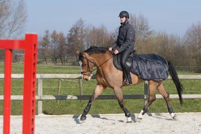 Полупопона для коня Fouganza2