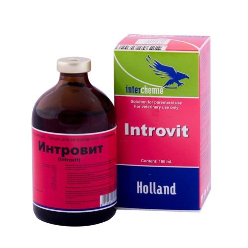 Интровит Нидерланды 100 мл