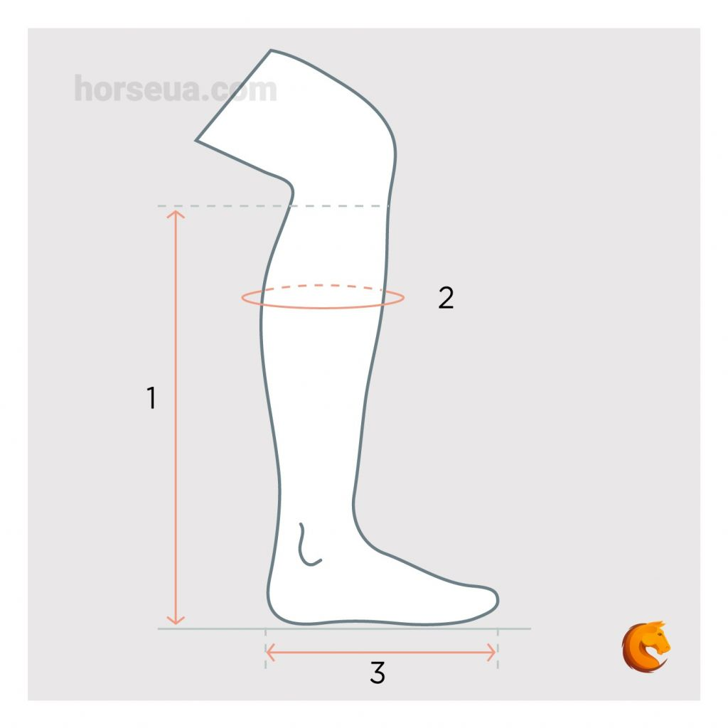 Як визначити розмір взуття для вершника