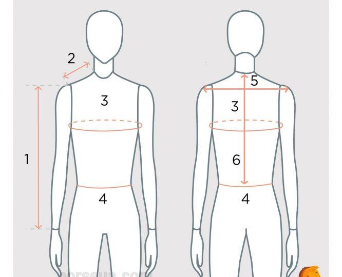 Як визначити розмір одягу для верхової їзди