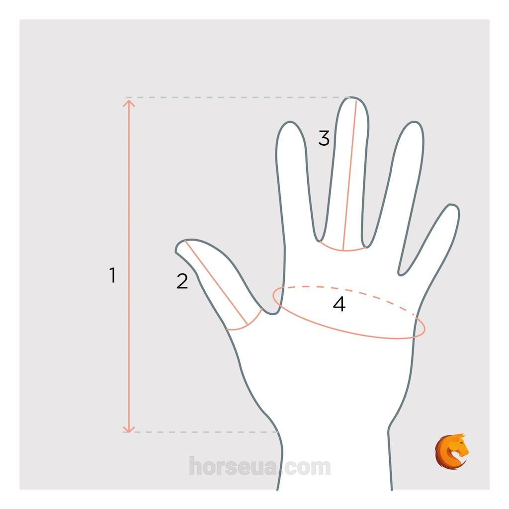 Как определить размер перчаток - замеряем руку