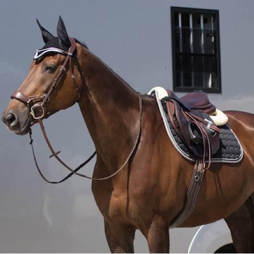 Попруга шкіряна анатомiчна конкурна для коня QHP2