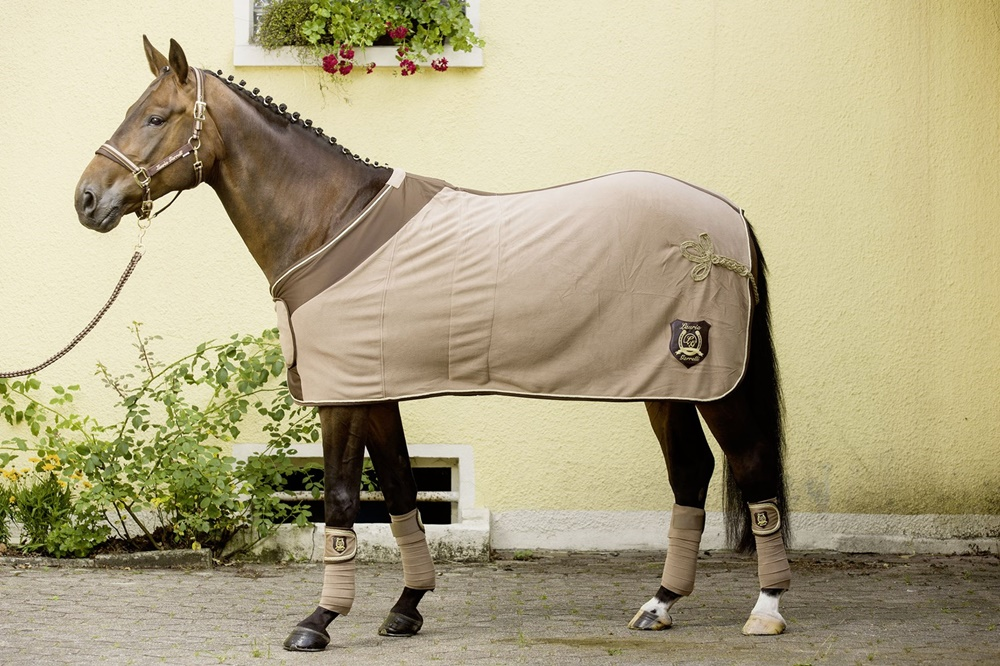 7 корисних порад як захистити коня від ґедзів і оводів