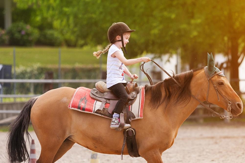 Выездка или конкур: что выбрать для ребенка