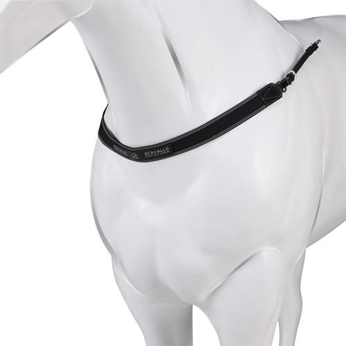 Нагрудник для лошади, Acavallo
