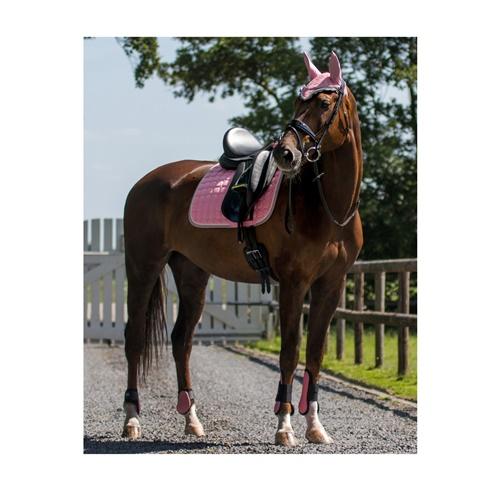 Ногавки на задние ноги лошади, QHP